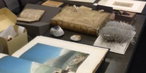 Image of rare books and artists books on a table.